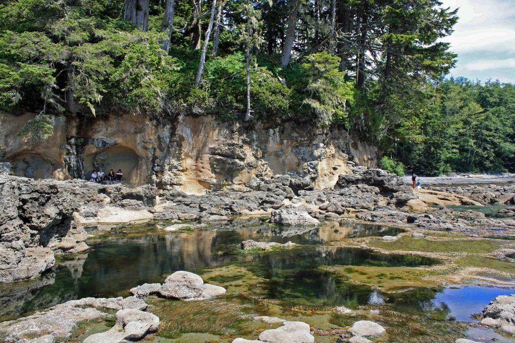 botanical beach sandstone cliffbeach