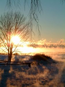 fog-steam-fog