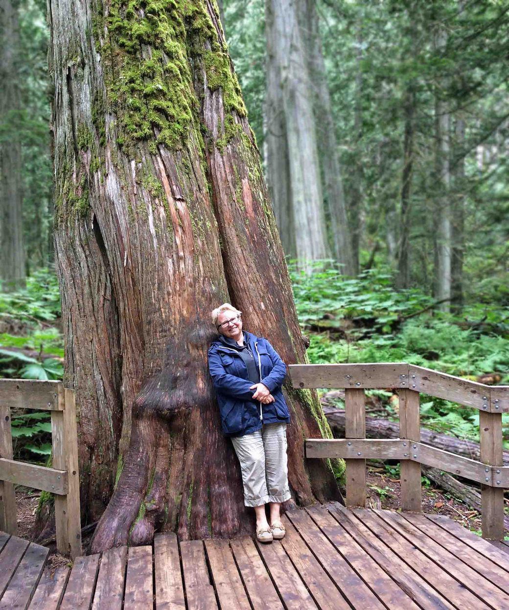 Nina-giant cedar03