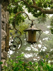 lamp-nature