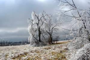 louisville-icestorm-jan09-16