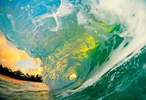 wave-clark-little