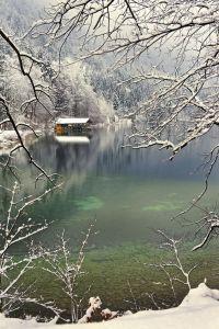 winter green lake