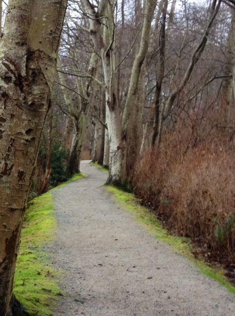 Path deas park