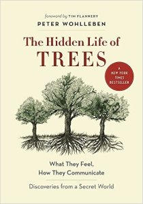 hiddenlifeoftrees