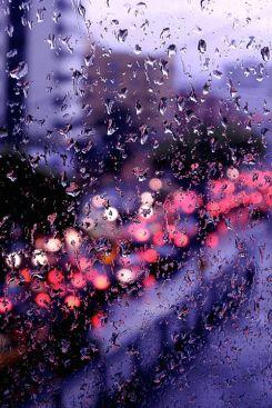 rain spattered city2