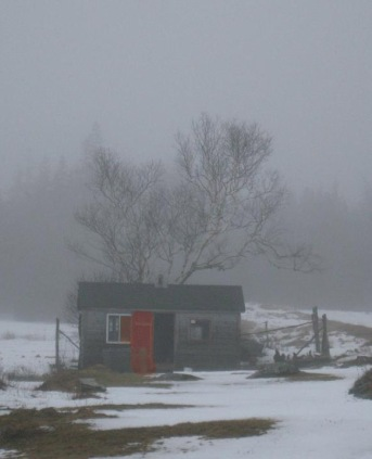 farm in fog-Liverpool NS