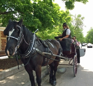 Horse carriage01