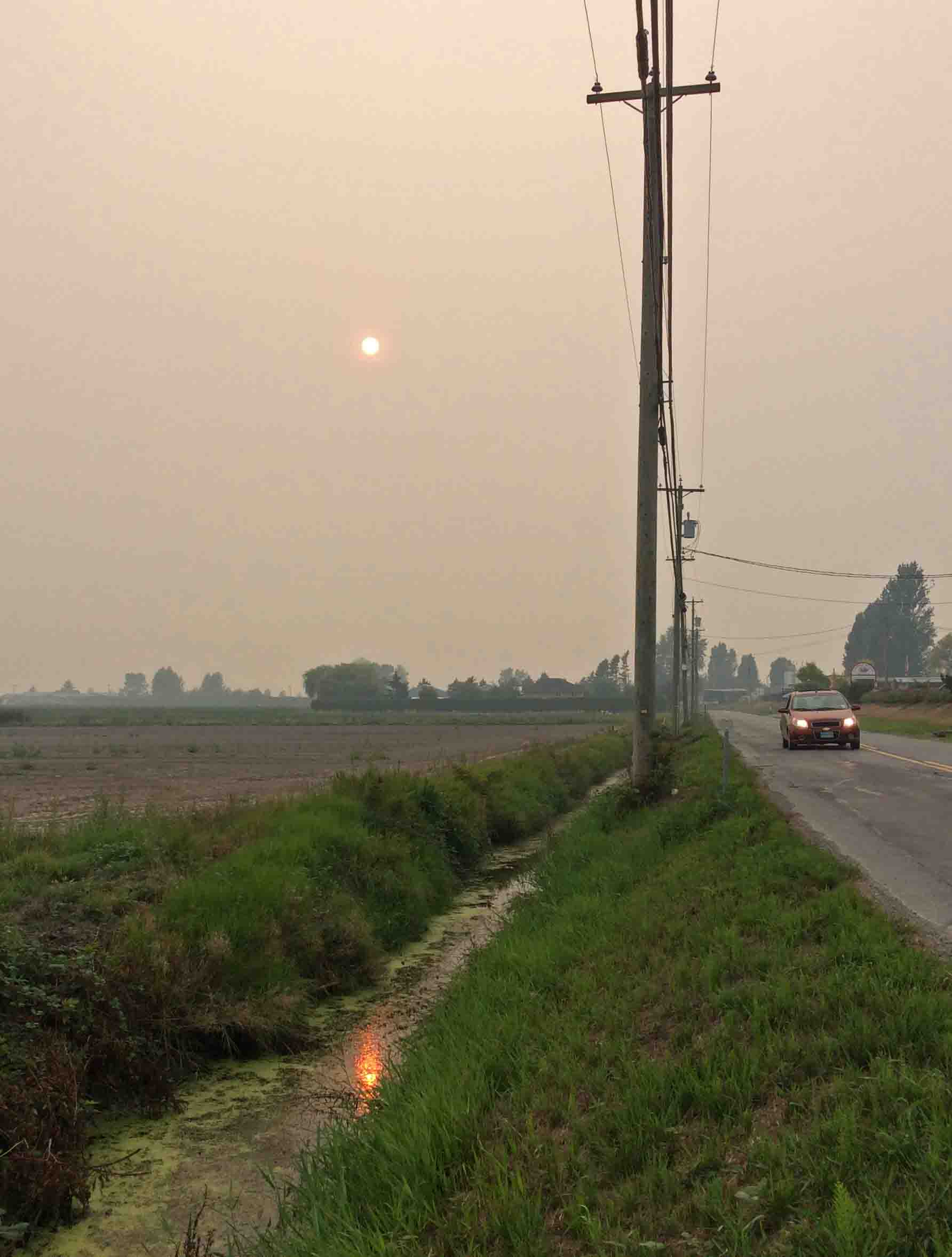 smoky sun-Ladner 6pm