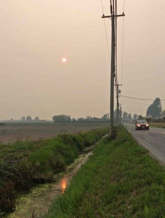 smoky sun-Ladner 6pm
