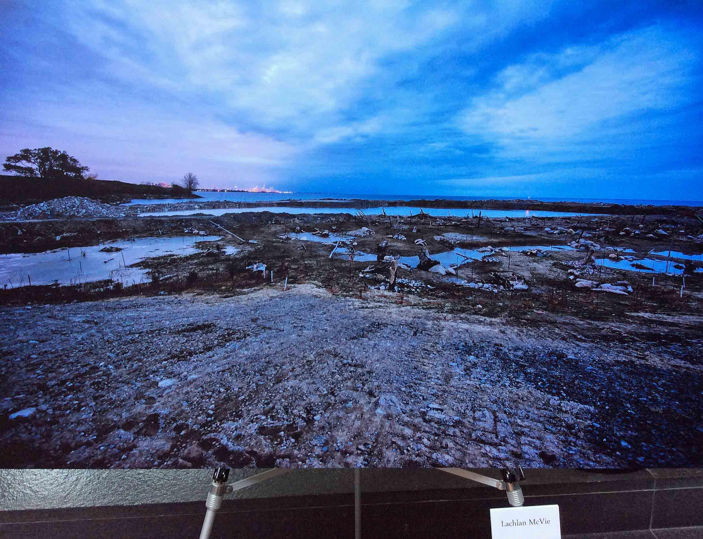 """Water Is…"" Appears in Morphology Exhibit at In Situ Multi Arts Festival 2018"
