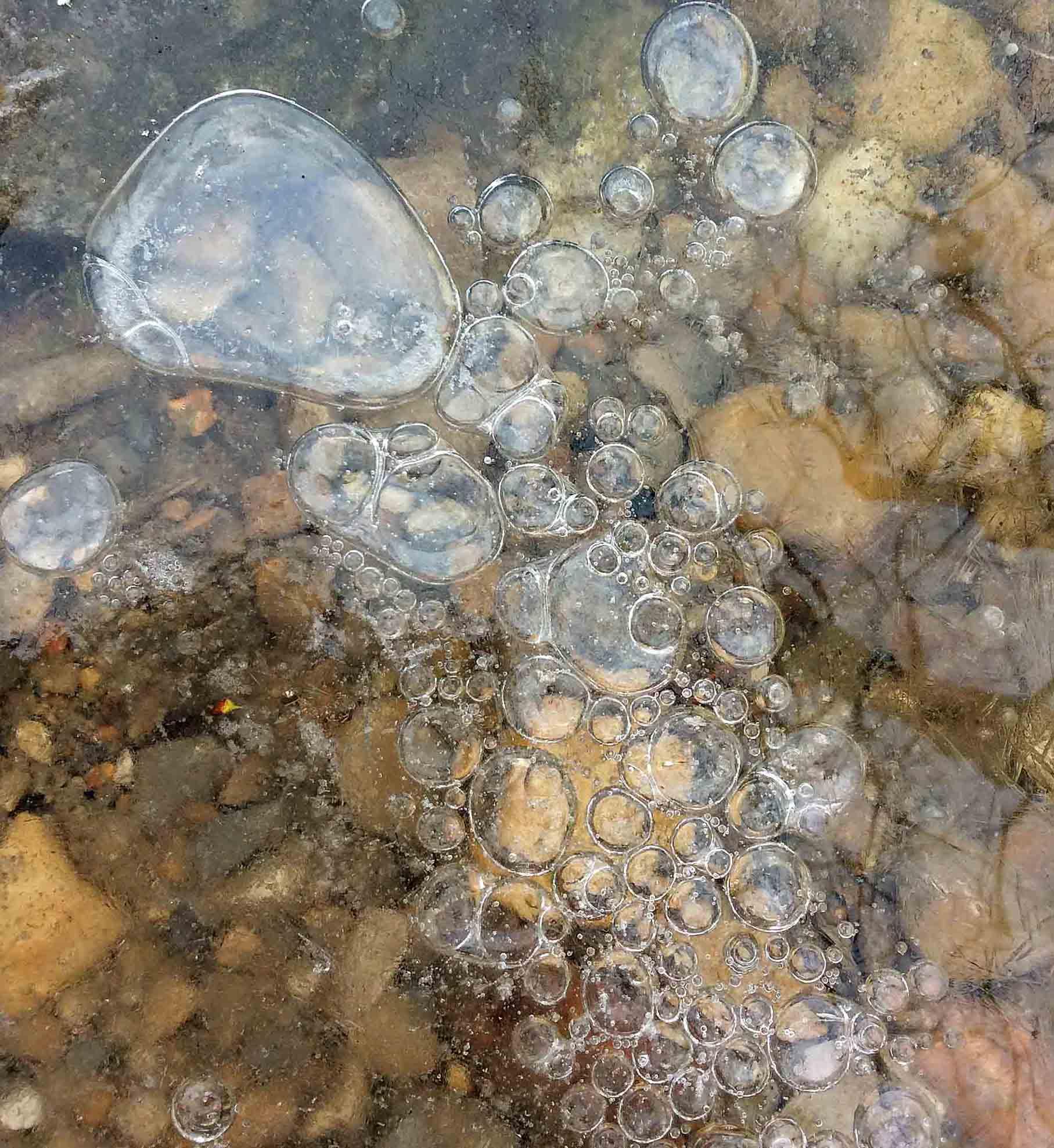 Bubbles under ice-LR