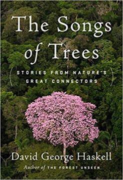 SongsOfTrees