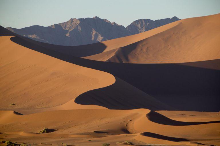 desert barkhans