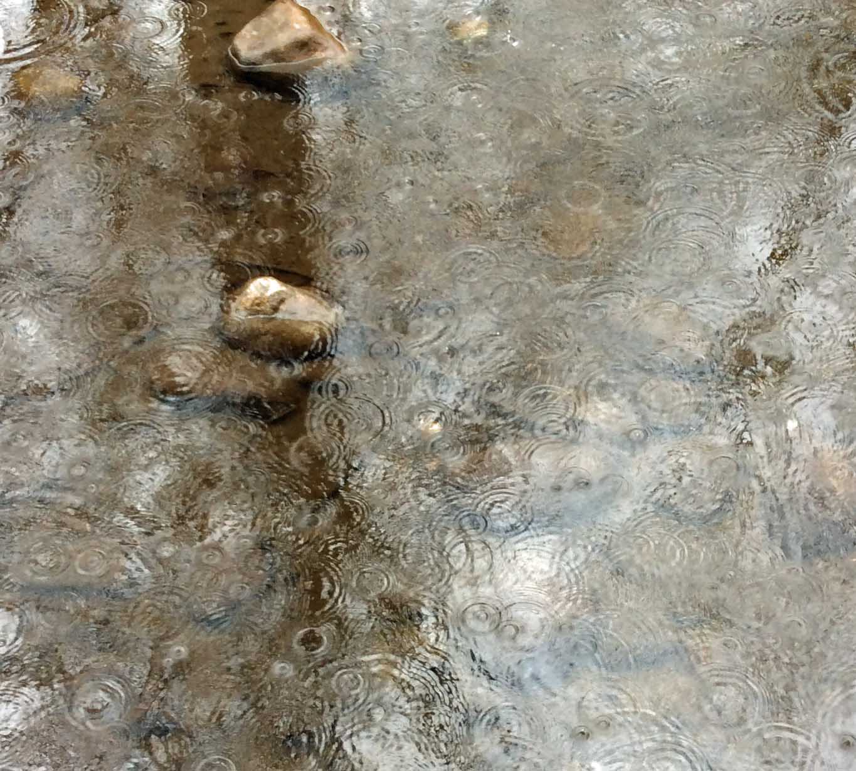 raindrops creek 05-Pb