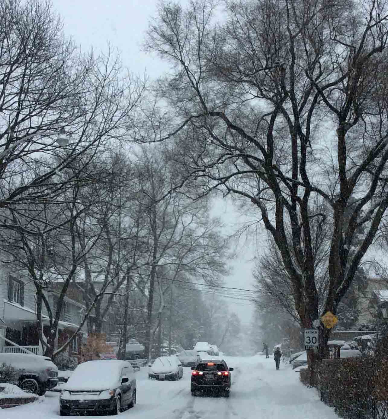 snowy street TheBeach
