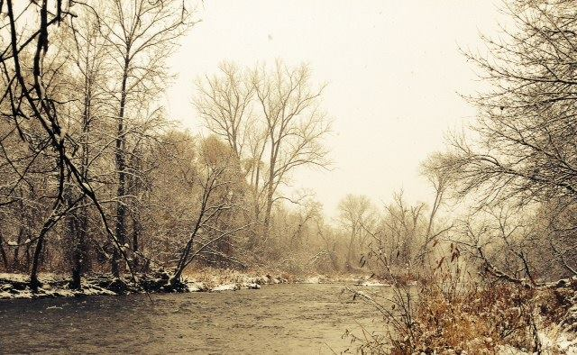 Credit River first snow