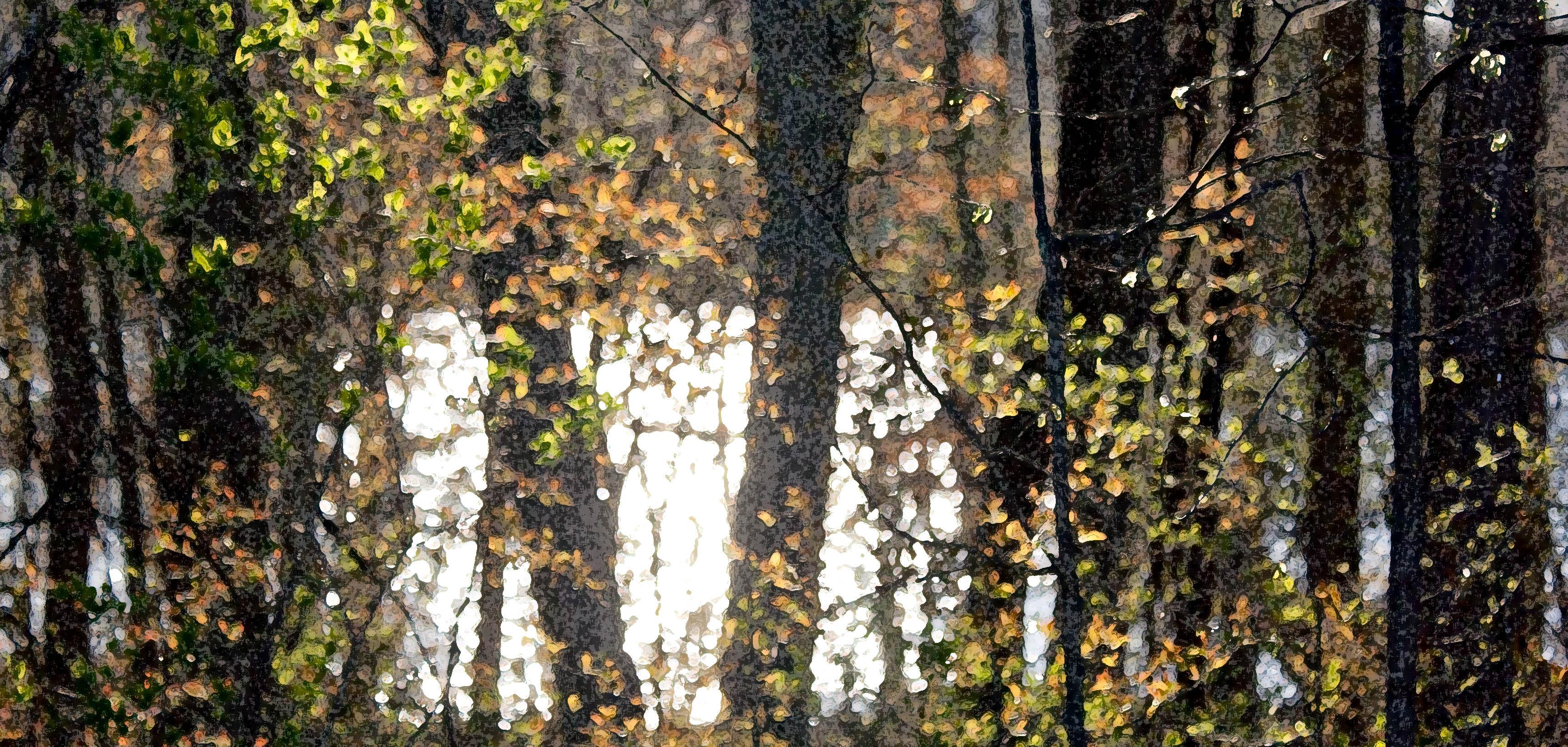 Nina Munteanu Talks Water and Writing on Kentucky's WMST-am Radio